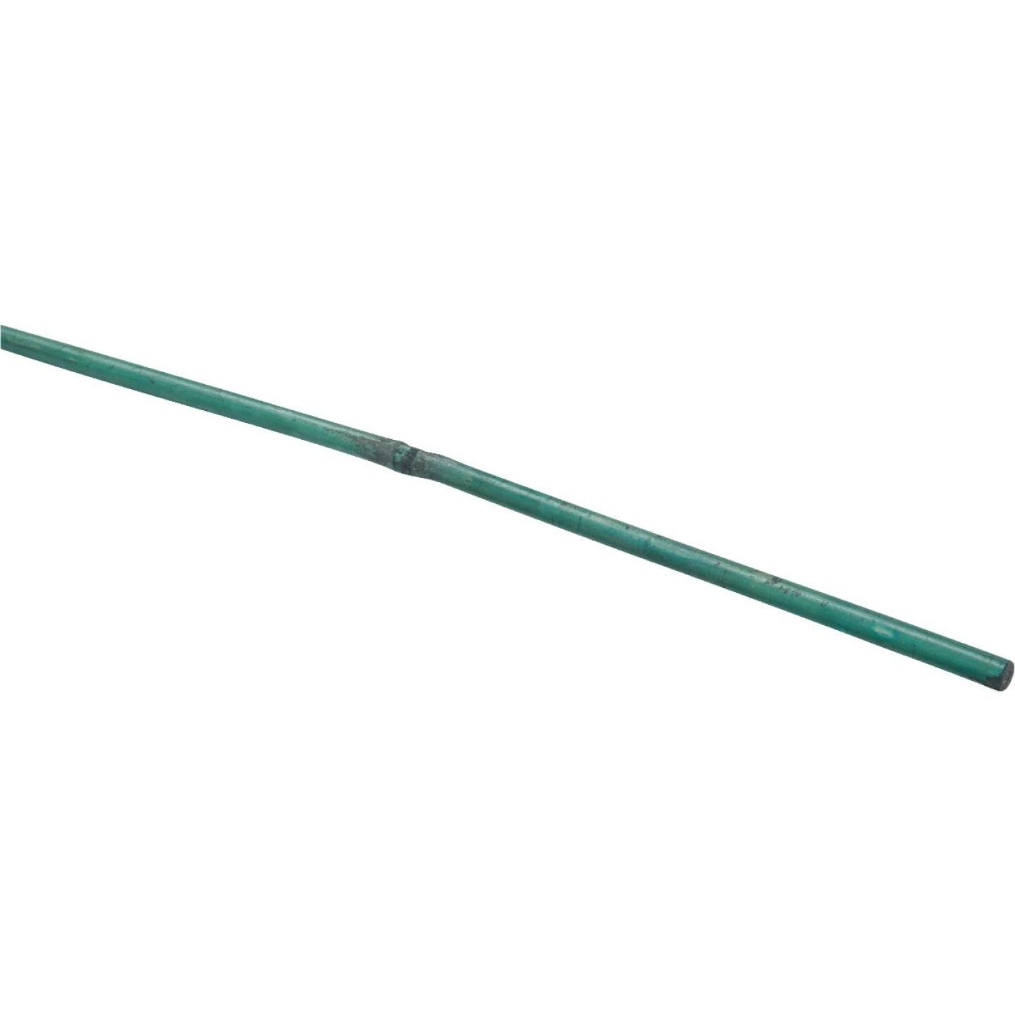 Bond 5 Ft. Green Bamboo Plant Stakes (6-Pack) Image 3